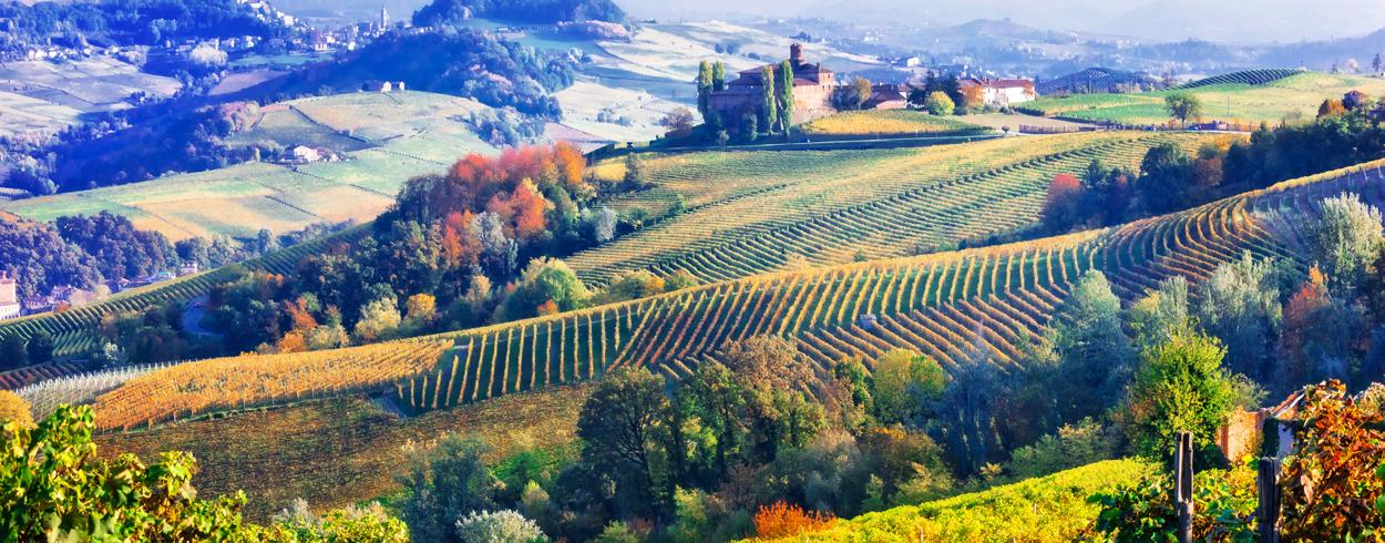 Italian Tarkeimmat Viinialueet Ihastu Italialaisiin Viineihin Alko