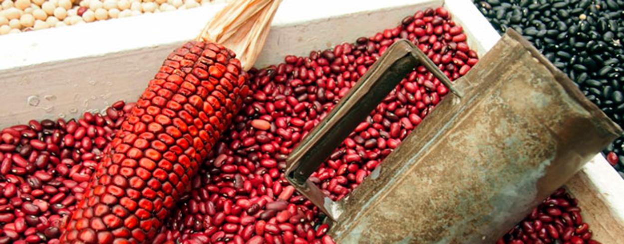 thai hieronta tampere eckeroline s etukortti